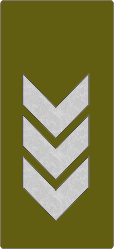 RANK INSIGNIA - POLICE & SECURITY