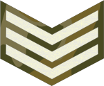 tanzania-army-land-forces_03.png