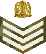 tanzania-army-land-forces_04.png