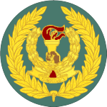 tanzania-army-land-forces_05.png