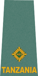 tanzania-army-land-forces_07.png
