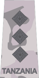 tanzania-army-land-forces_09.png