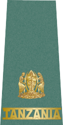 tanzania-army-land-forces_10.png